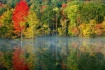 An Autumn Pond.