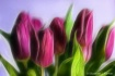Calling of Spring