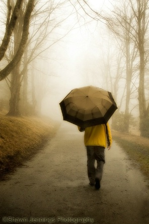 - The Walk -