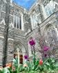 Duke Chapel # 3