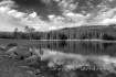 Bass Lake B&W