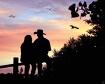 Romance in Silhou...