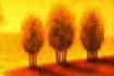 3 Arboles
