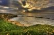 Cove Pelican Suns...
