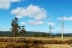 A Rural Scene,Tas...