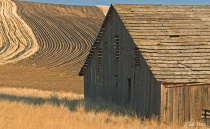 Barn and plowed fields