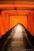 Fushimi Inari Shr...