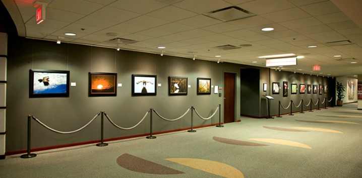 <b>Mayo Clinic Scottsdale Exhibition</b> - ID: 6026823 © Edward H. Mertz