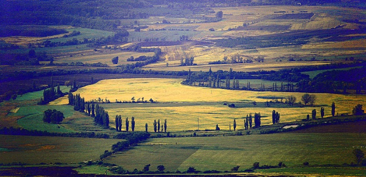 Field from Afar - ID: 6040555 © STEVEN B. GRUEBER