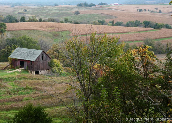 Barn and fields - ID: 6083203 © Jacqueline M. Stoken
