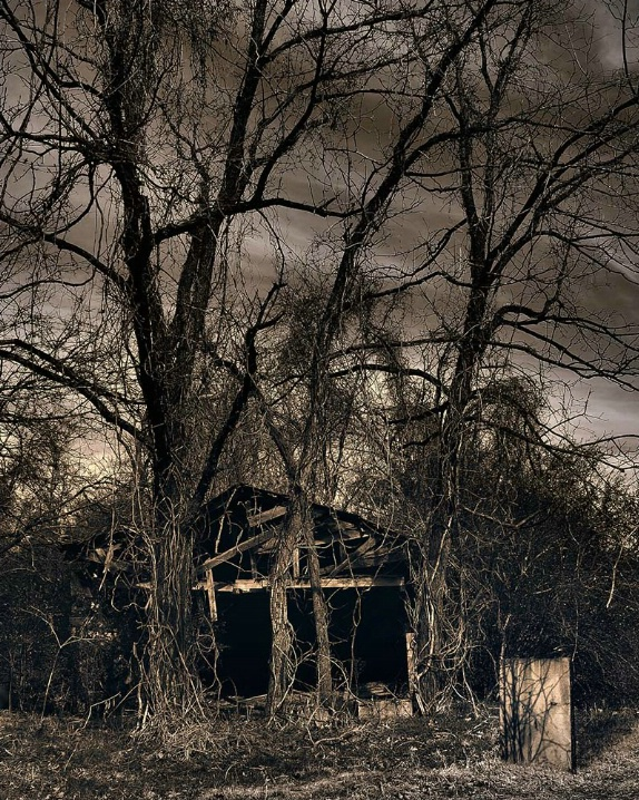 Dark Becomes Light - ID: 6090214 © Steve Parrott
