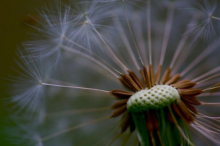 Windy - ID: 6107014 © Michael Wehrman
