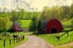 Spring in Amish C...