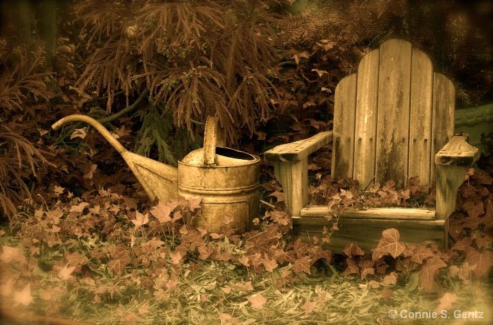 Vintage Garden II