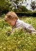 Child in chamomil...