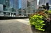 City Flower Pot
