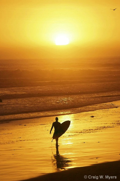 Sundown Surfer I - ID: 6267615 © Craig W. Myers
