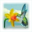 Deep into Daffodi...