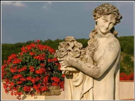 Statue & geraniums - Tuscany