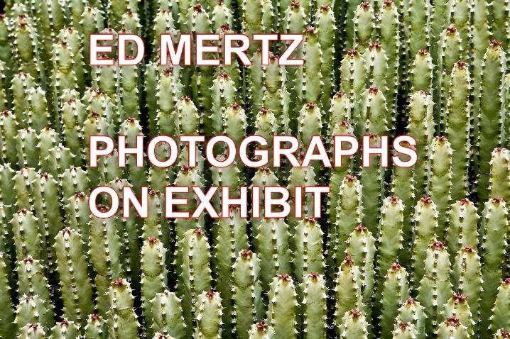 - ID: 6347484 © Edward H. Mertz