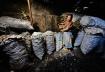 charcoal trader #...