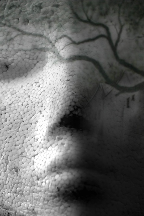 Illusionary Me  - ID: 6417976 © Steve Parrott
