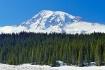 Mount Rainier in ...