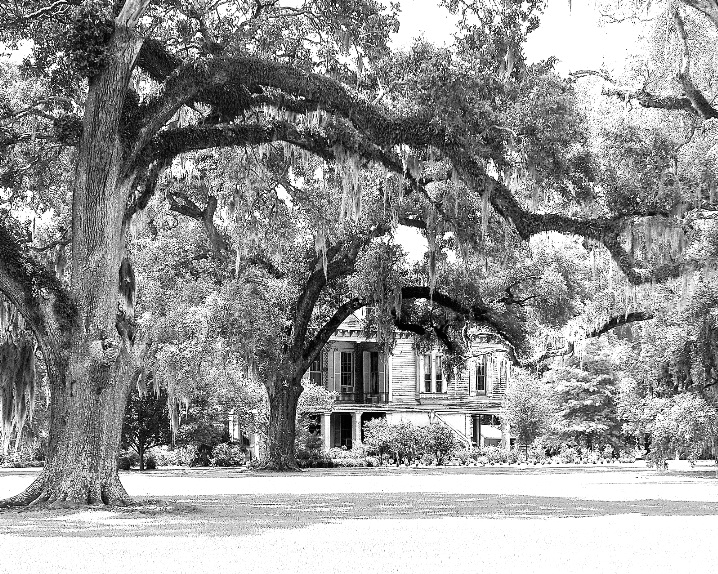 Hidden Secrets of the Old South