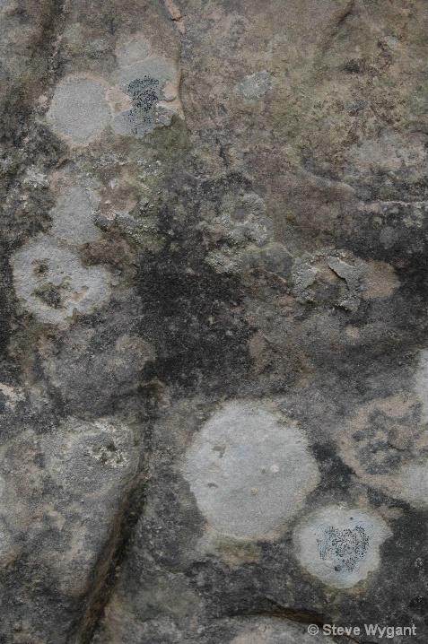 Granite and lichen