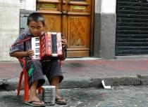 The accordeonist