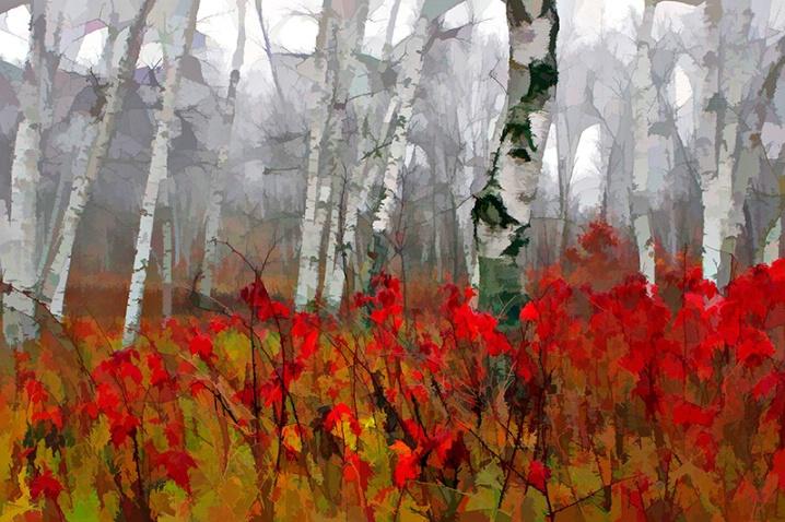 Raspberry Fall