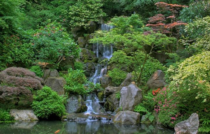 Japanese Garden IV