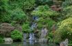 Japanese Garden I...
