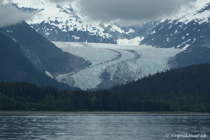 Mendenall Glacier - ID: 6521240 © Virginia L. Hughes