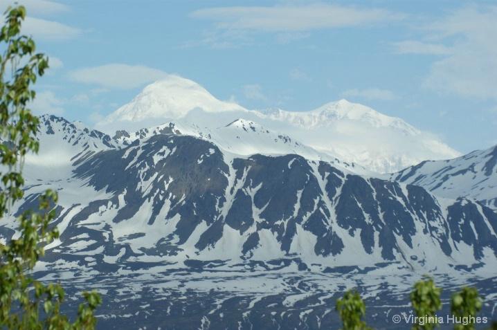 Mt. McKinley South View - ID: 6521417 © Virginia L. Hughes