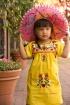 Little yellow dre...