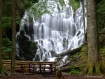 Waterfall Crossin...