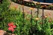 Brookgreen Garden...