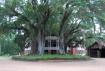 Longwood House 2