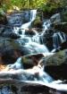 Spingbrook Creek ...