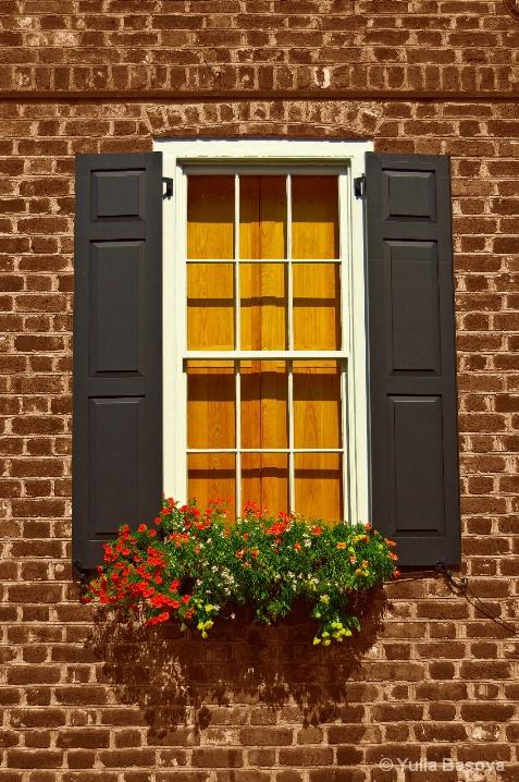 Charleston windows - ID: 6585296 © Yulia Basova