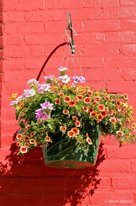_palouse-flower-basket_mm10367 - ID: 6600981 © Marilynn Mann