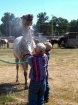 A Horse Shower