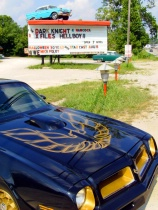 Trans Am at the Drive-in Movies