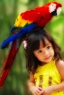 """My Colorful ..."