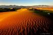 Mesquite Sand Dun...