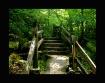 Path to Pearson&#...