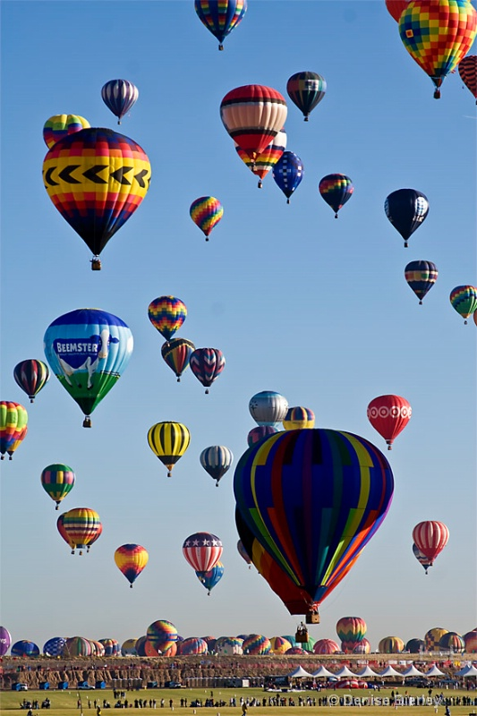 Balloon Competition - ID: 6750520 © Denise Bierley