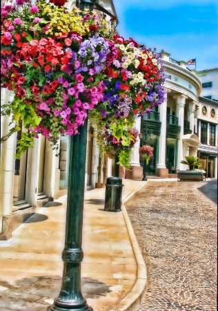 Brilliant Beverly Hills