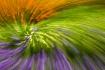 Inside Monet'...
